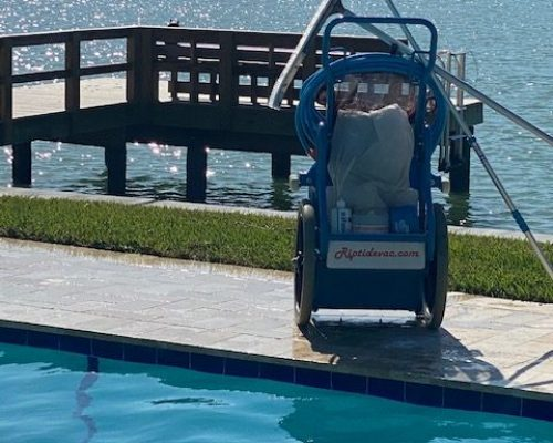We are the Best Rated Pool Service Company in Citrus Park